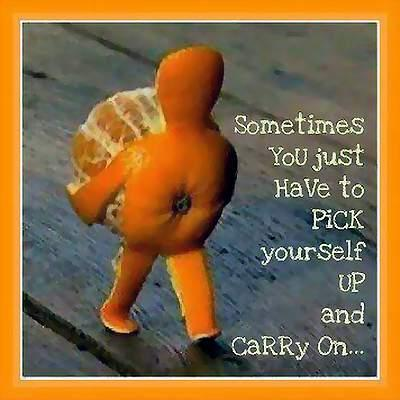 sometimes-you-just-have-to-pick-yourself-up-and-carry-on-quote-1jpgbeb9dd1d1d91401b2df1ddc8e9ff5bd0jpg