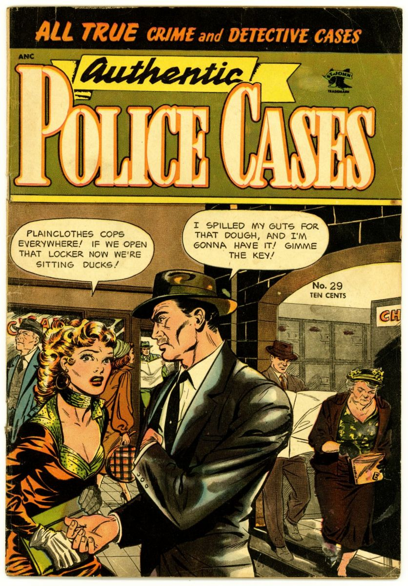 Authentic Police Cases 29 front.jpg