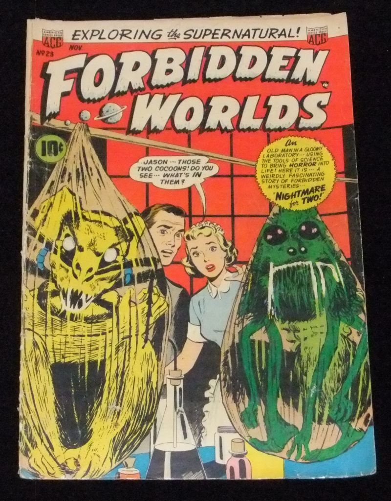 forbidden worlds #23 and journey into fear 16 009.JPG