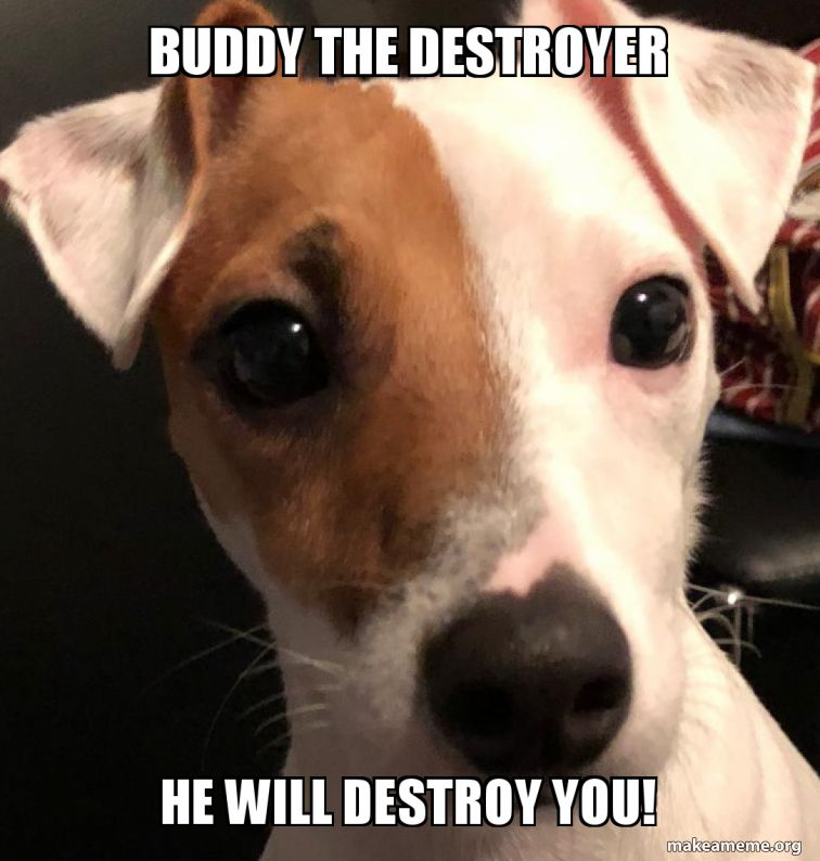 buddy-the-destroyer.jpg