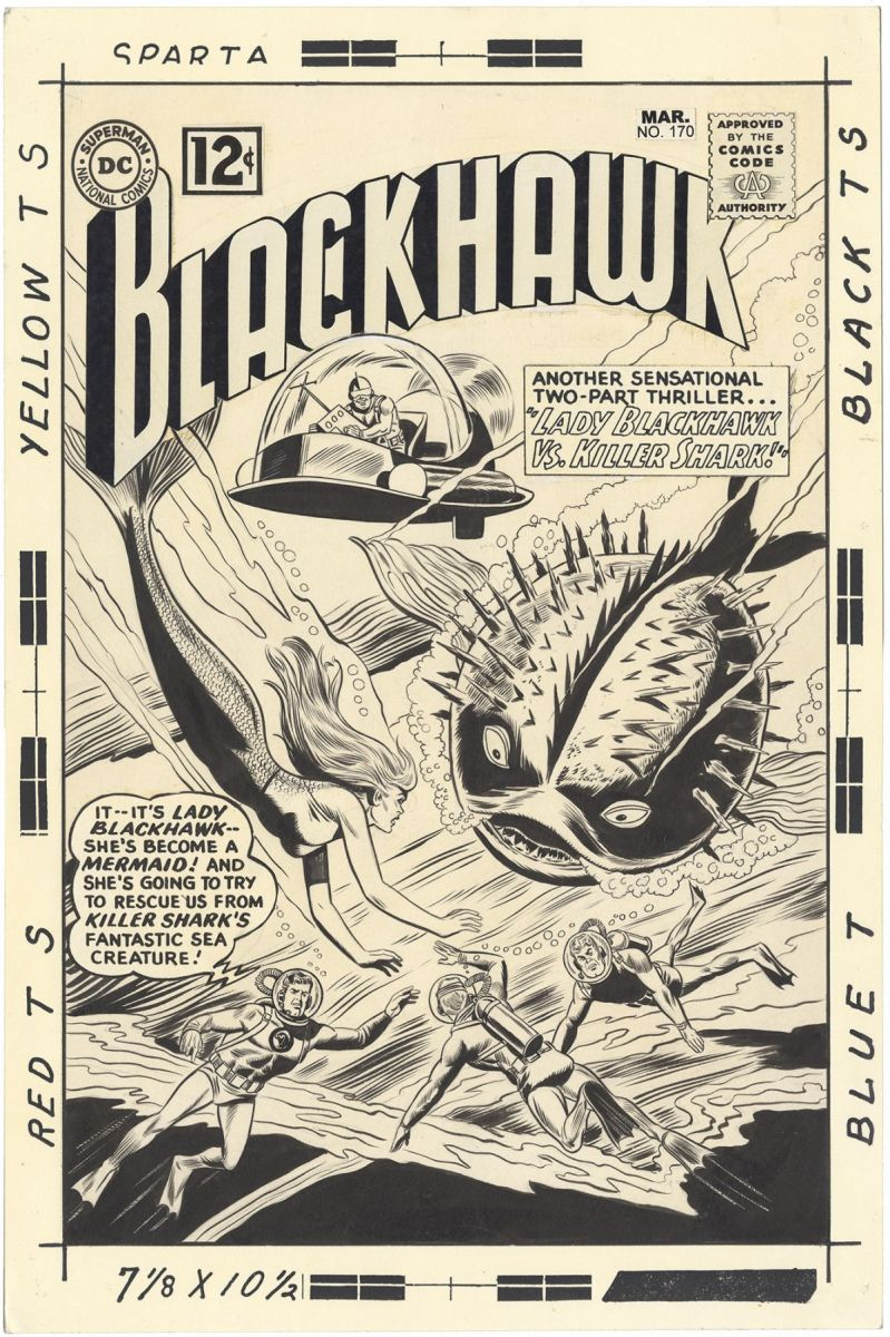 Blackhawk_170_cover.jpg